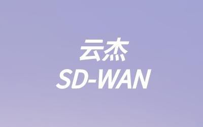 SD-WAN 简化高度复杂的广域网网络
