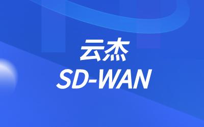 sdwan路由分支个数
