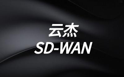 SD-WAN数据中心路由
