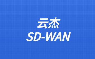 sdwan数据传输安全性能