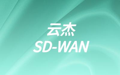 基于专线搭建SDWAN
