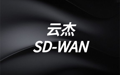 SD-WAN数据中心端点