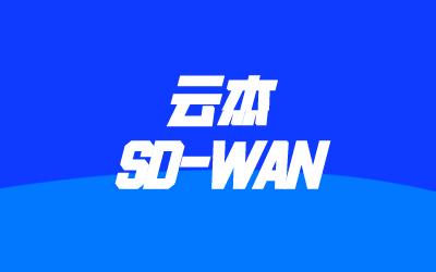華為SD-WAN產品方案