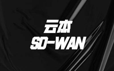 SD-WAN广域网骨干网