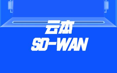 sdwan总结报告