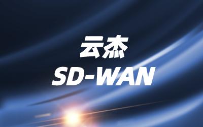 SDN南向网络核心技术
