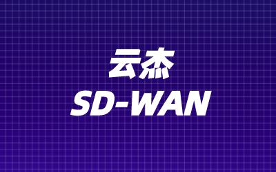 制造业sdwan组网技术方案