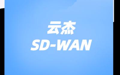 弹性SD-WAN网络有什么特征?