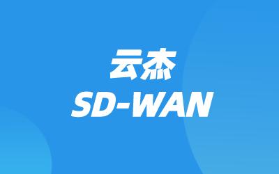 SD-WAN与云联网组网方案
