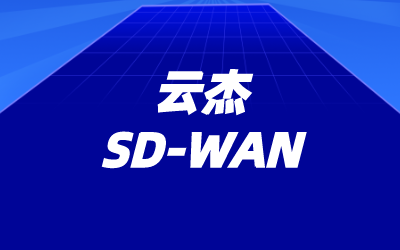 sdwan关键应用加速解决方案