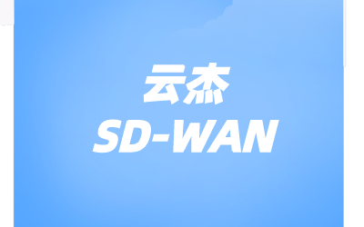 sdwan企业组网技术
