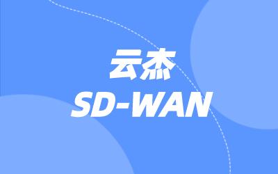 SD-WAN厂商系统架构