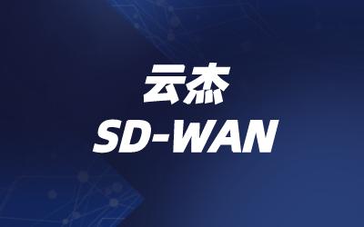 全球SD-WAN企业组网业务