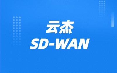 SDWAN路由组网