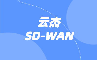 SD-WAN CPE设备