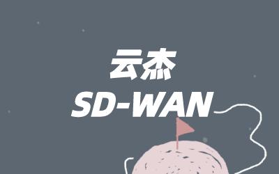 sdwan 基于什么技术?