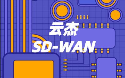 运营商sdwan组网类型