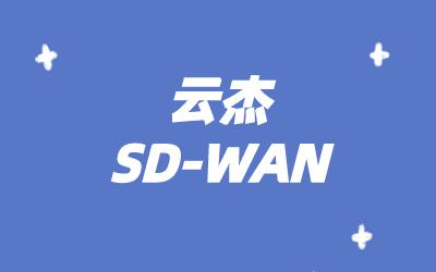 sdwan组网技术:SDWAN广域网方案