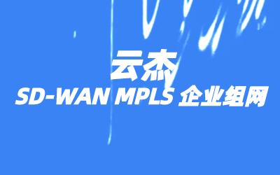 SD-WAN网络拓扑结构