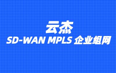 SD-WAN解决方案的主要特点