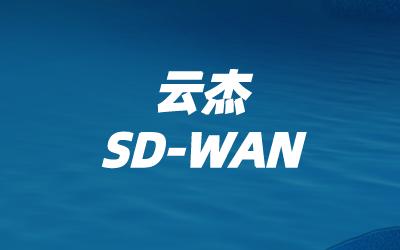 联通sdwan方案介绍