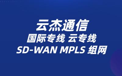 IaaS架构云平台通过SD-WAN专线访问
