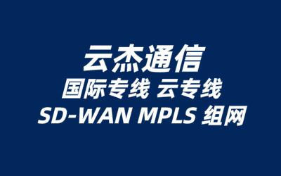中国有推出sdwan服务的厂商