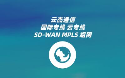 全球SDWAN远程访问主要功能
