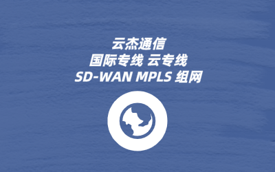 SDWAN虚拟网络安全性能
