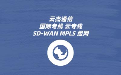 SDWAN性能网络安全性